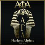 Harlem Alphas logo